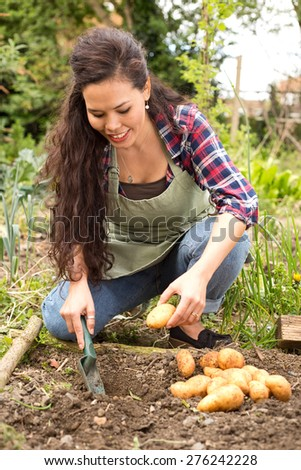 young woman sowing sowing potatoes