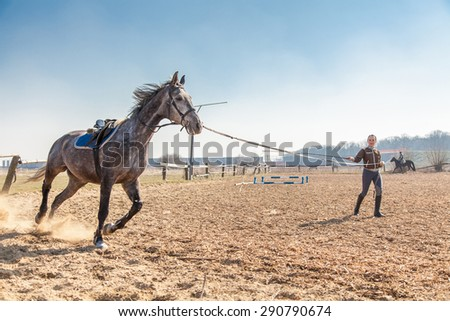 Young woman training a horse. - stock photo