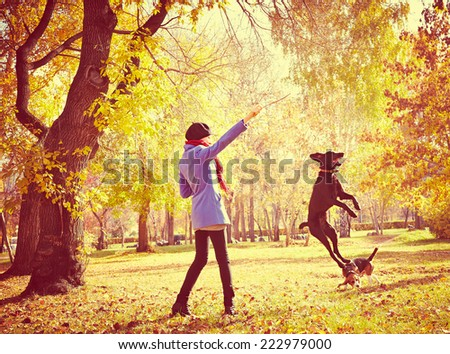 young woman training dog outdoor  - stock photo