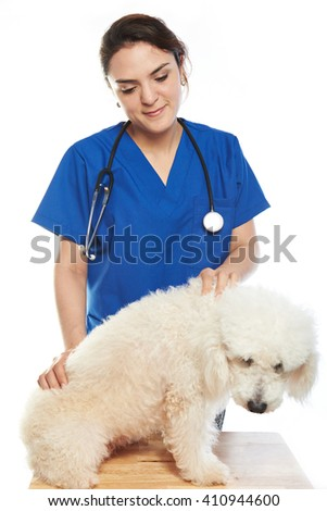 young woman veterinar check dog isolated on white