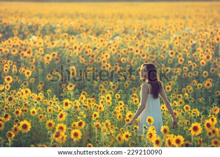 Young woman walking away in a field of sunflowers, view from her back; copy space - stock photo