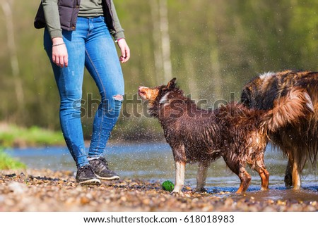 young woman with an Australian Shepherd and a Collie-Mix at the river