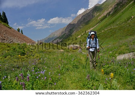 Young woman with big backpack and sticks has trekking along covered with flowers  gorge. Hiking may be vigorous physical activity. - stock photo