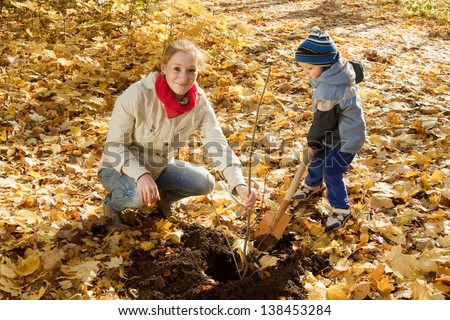 young woman with her son planting  tree in autumn garden - stock photo