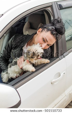 Young woman witha little dog in the car