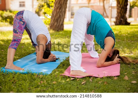 Young women doing some yoga together at a park - stock photo