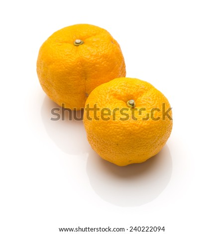 Yuzu fruits (Hybrid between Citrus ichangensis and Citrus reticulata) famous for aromatic zest  - stock photo