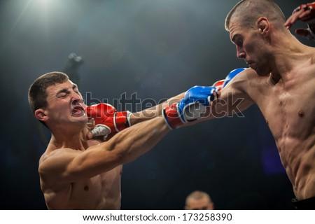 ZAGREB, CROATIA - NOVEMBER 2, 2013: Final fights at Croatian MMA legaue. Antonio MIJATOVIC (red gloves) VS Zoran DOD (blue gloves). - stock photo