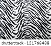 Zebra fabric texture - stock photo