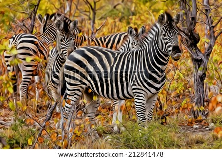 Zebra in Kruger National Park, South Africa, stylized and filtered to look like an oil painting - stock photo
