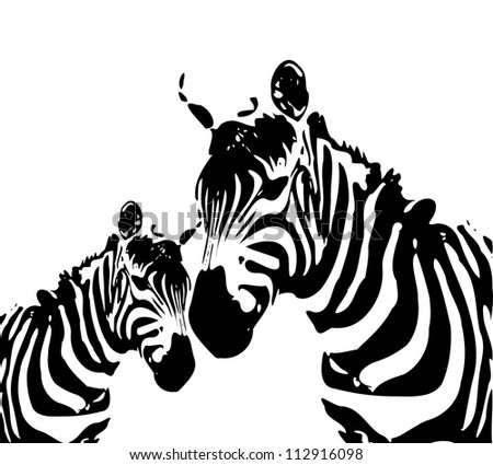 zebra - mother and child - stock photo