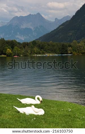 Zeller Lake, Zell am See, Austria, Europe - stock photo