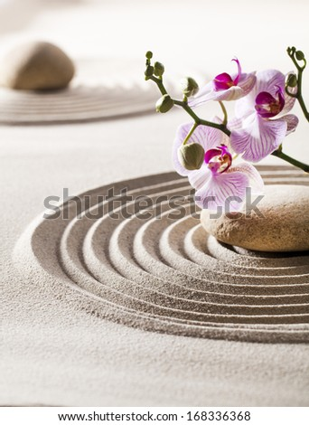 zen design with sand waves and fresh beautiful flowers - stock photo