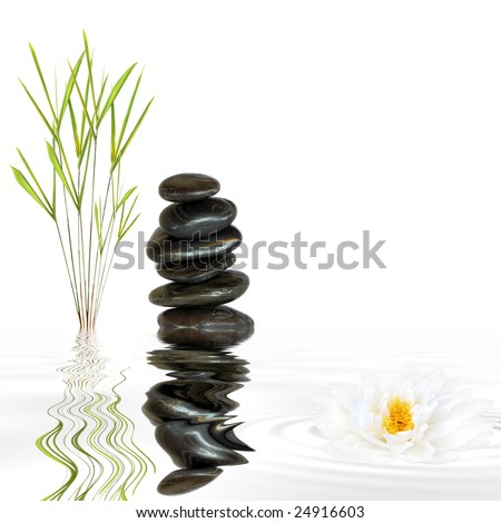 Zen garden abstract of black spa stones in perfect balance and natural bamboo grass with reflection over grey rippled water and a lotus lily flower, against white background. - stock photo