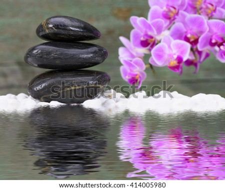 Zen garden with mirroring and reflection in water