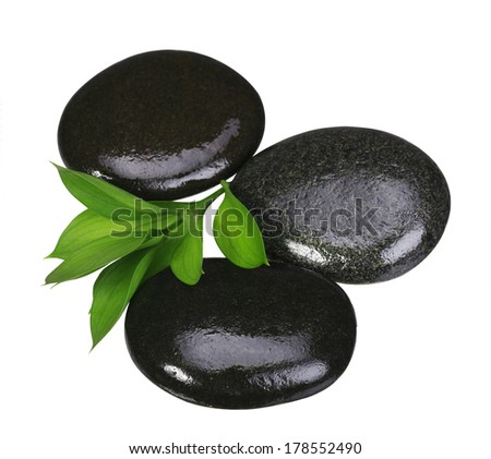 Zen pebbles. Spa Stones and Green Leaves isolated on white. Health Care concept.