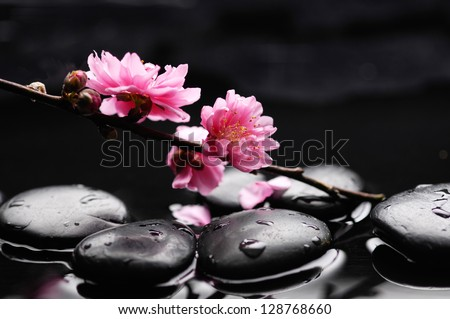 Zen pebbles. Stone spa - stock photo