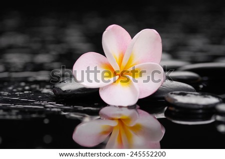 Zen pebbles. Stone spa and spa concept. - stock photo