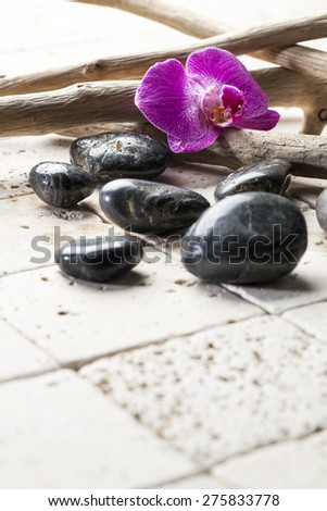 zen pebbles with orchid for beauty atmosphere - stock photo
