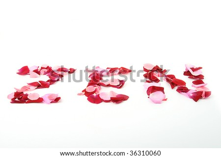 zen, rose petals isolated on white background