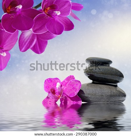 Zen spa concept background - Zen massage stones and orchid flowers reflected in water - stock photo