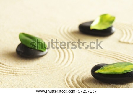 zen still life with sand and green leaf showing wellness concept - stock photo
