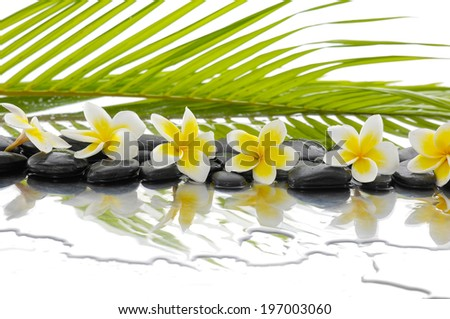 Zen stones and Frangipani and palm leaf background - stock photo