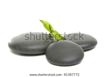 zen stones and green bamboo leaf