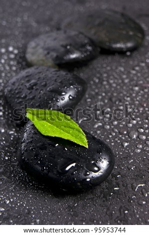 zen stones and green leaf with water drops - stock photo