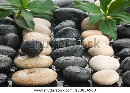 Zen stones and leaves with water drops can be used as background