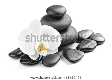 zen stones and  orchid isolated on white