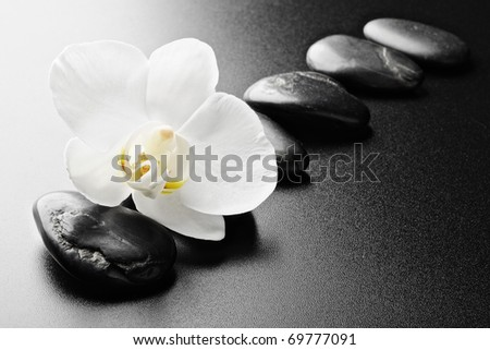 zen stones and  orchid on the black