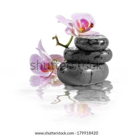 Zen stones and orchid with reflection in water.  - stock photo