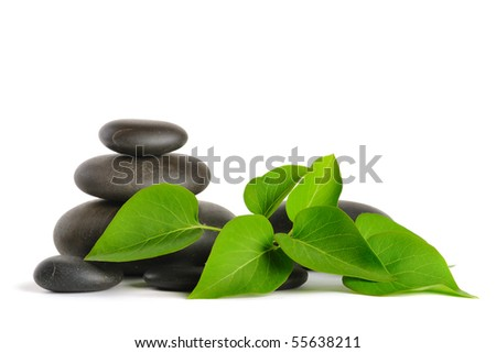 Zen stones and plant on the white background - stock photo