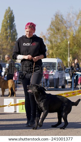 Zhytomyr, Ukraine - October 11, 2014: Exhibition of dogs on the area in the city of Zhytomyr October 11, 2014.