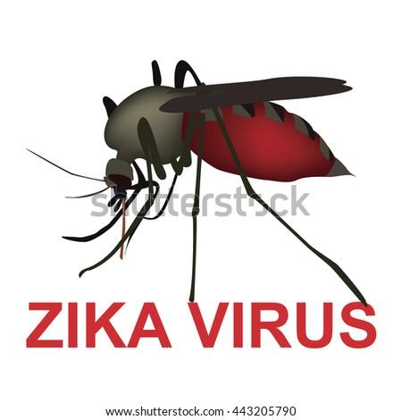 zika virus - stock photo
