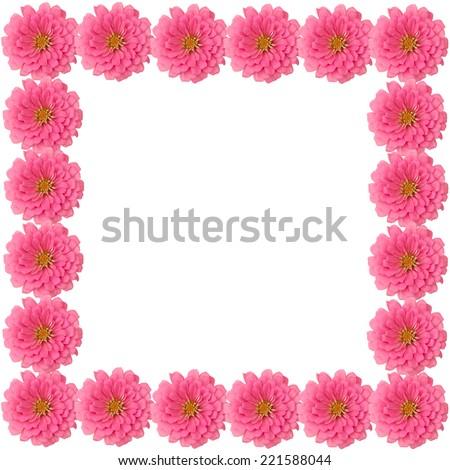 Zinnias flower frame isolated on white background - stock photo