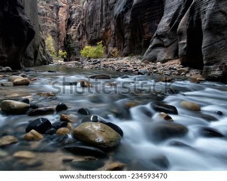 Zion Narrows Flow - stock photo