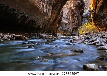Zion Narrows - Virgin River in Utah's Zion National Park