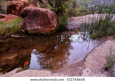 Zion national park, Emerald pool - stock photo