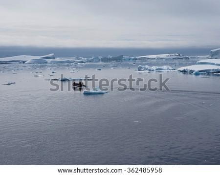 Zodiac in Antarctica blue iceberg landscape ocean mirrow reflection - stock photo
