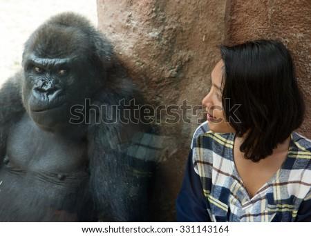 Zoo visitor at the gorilla enclosure - stock photo