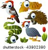 2010 animal set: woodpecker, echidna, cuttlefish, helmeted fowl, snake - stock vector