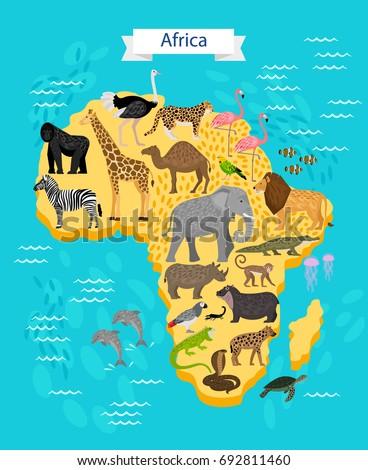 Animals Birds On Africa Map Stock Vector 692811460 Shutterstock
