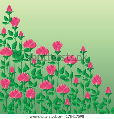 Background with roses. Set for a bouquet of roses on a green background. Roses for cutting. - stock vector