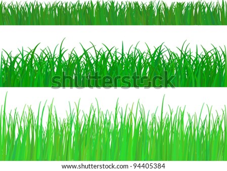 3 backgrounds of fresh spring green grass Isolated On White. Vector