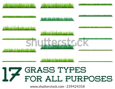 17 Backgrounds Of Green Grass, Isolated On White Background, Vector Illustration - stock vector