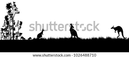 Black silhouette of koala and kanagroos on white background.