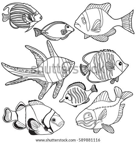 Coloring Book Hand Drawn Adults Children Sea Animals Fish Black