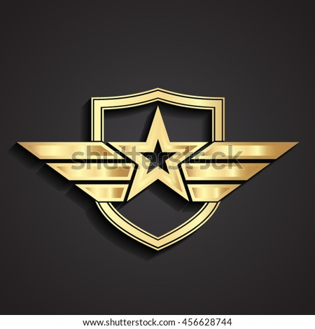 M Rank 3d Golden Military Star